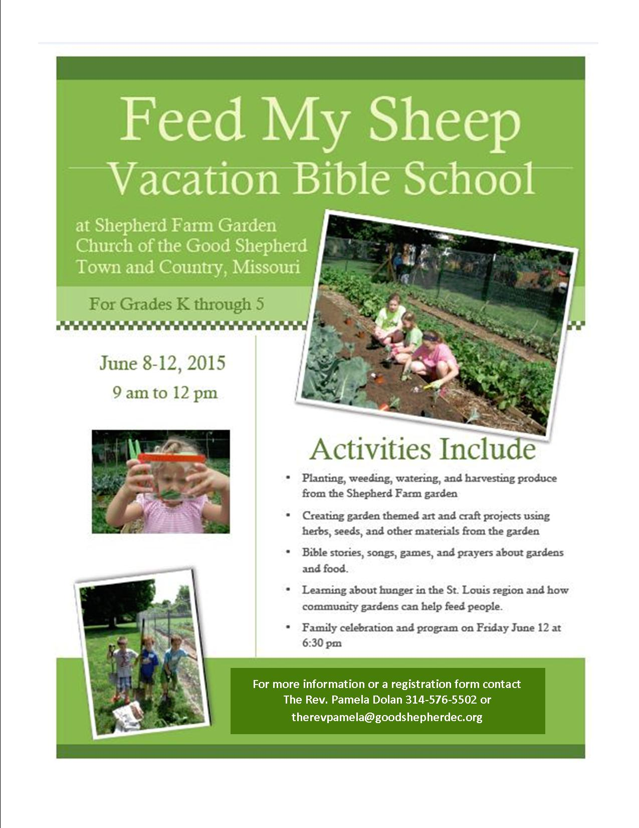 Feed My Sheep VBS Flyer for Churches